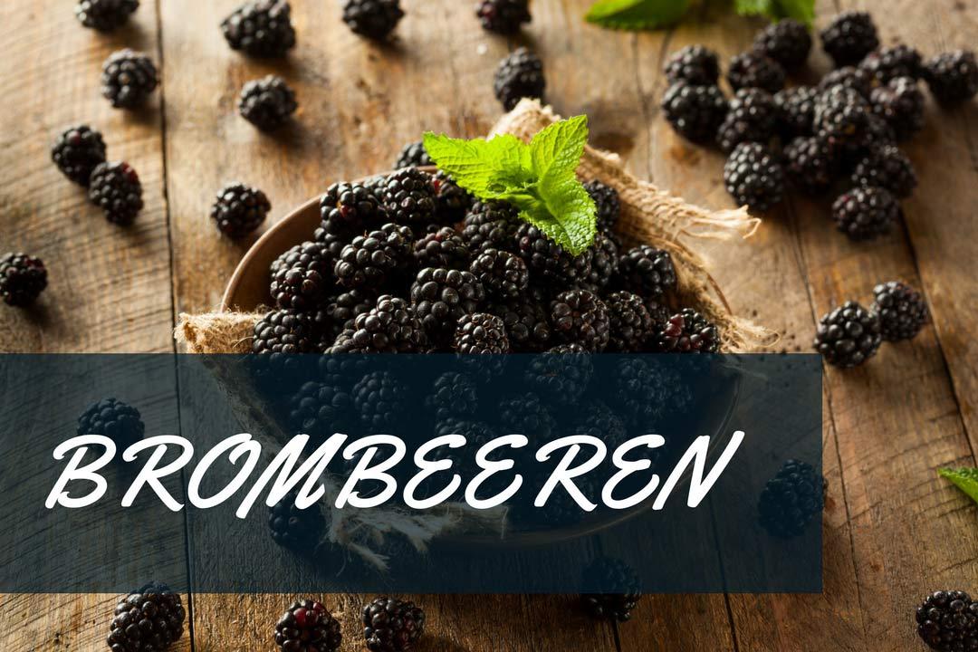 brombeeren hombeeren, brombeeren rezepte, heilpflanze, brombeere gesund, brombeere gesundheitliche wirkung, brombeere rezepte