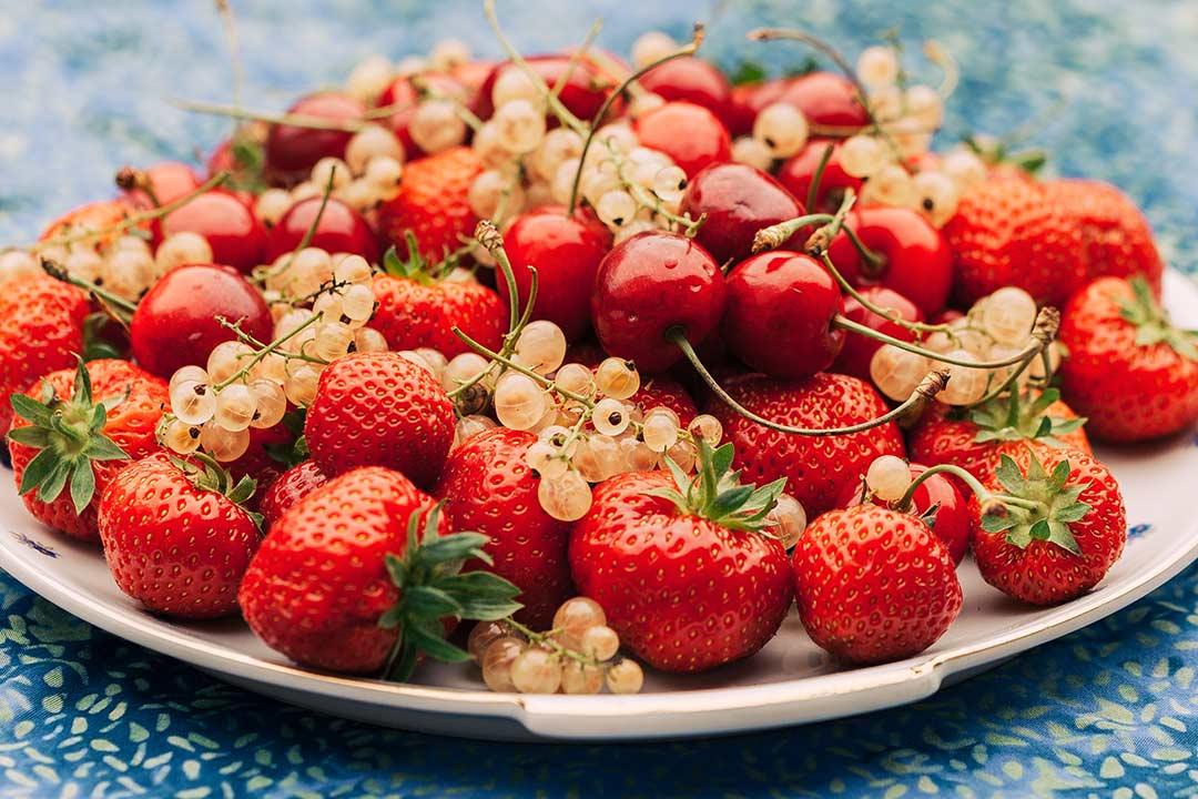 kirschen, kirschen gesund, schwarze johannisbeeren, johannisbeeren schneiden, johannisbeeren rezept, rote johannisbeeren, kuchen johannisbeeren, erdbeeren, erdbeeren kalorien, erdbeeren inhaltsstoffe, erdbeeren rezepte