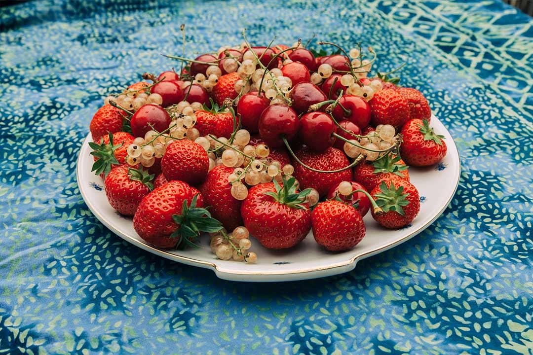 gesunde erdbeeren kirschen johannisbeeren und ein. Black Bedroom Furniture Sets. Home Design Ideas