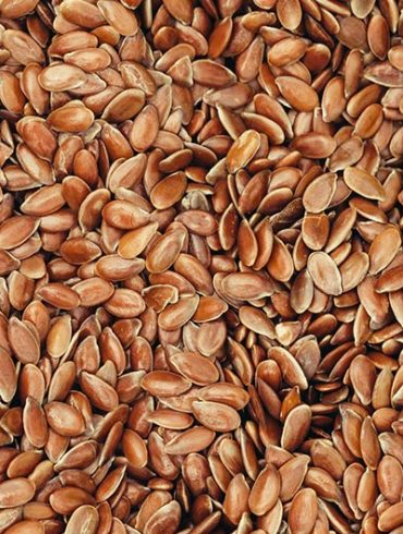 leinsamen zubereitung, leinsamen geschrotet, leinsamen abnehmen, leinesamen wie essen, leinsamen wirkung, leinsamen inhaltstoffen, leinsamen öl, chia samen, leinsamen gesund, leinsamen kaufen, leinsamen kalorien, leinöl