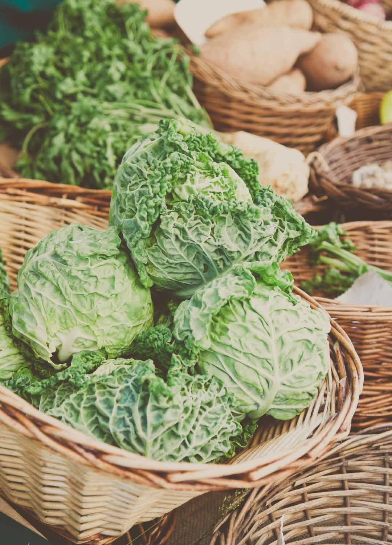 Rezept wirsing, wirsing rezepte, wirsing gemüse, wirsing auflauf, wirsing eintopf, wirsing kochen, wirsing zubereiten, rezepte mit wirsing, rezept mit wirsing, wirsing vegetarisch, wirsing pfanne, wirsing suppe