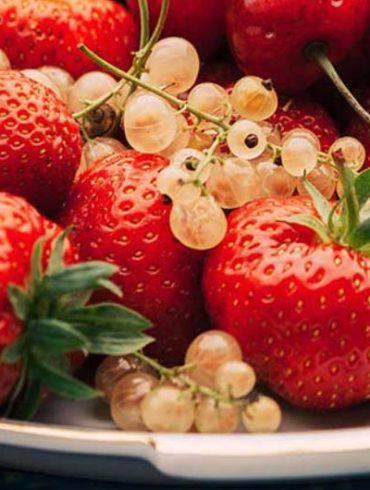 rote beeren, smoothie, beeren farbe, beeren rezepte, beeren gesund, beeren dessert, himbeeren, erdbeeren, heidelbeeren, beeren lagern