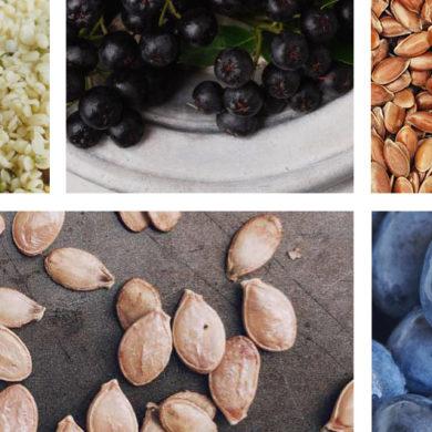 superfoods rezepte, chia samen, superfood gesund, superfood, aroniabeere, heidelbeere, Kürbiskerne, Hanfsamen, Leinsamen, superfoods