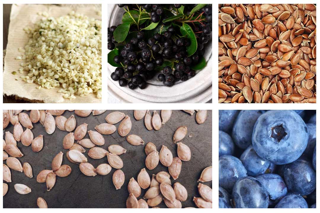 superfood rezepte, chia samen, superfood gesund, superfood, aroniabeere, heidelbeere, Kürbiskerne, Hanfsamen, Leinsamen